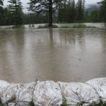 Banff sandbagging