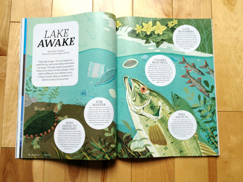 Lake Awake illustration
