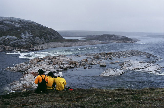 Friends looking over the ocean in the arctic