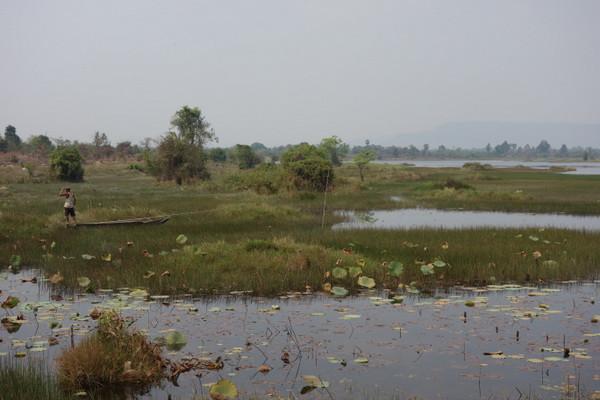 Angkor lagoon