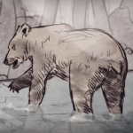 grizzly bear animation