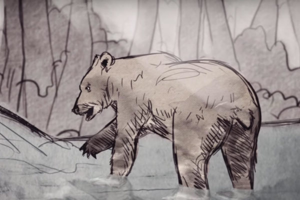 Brown drawing of grizzly bear