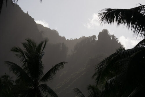 almost black and white shot of Marquesan cliffs and palms