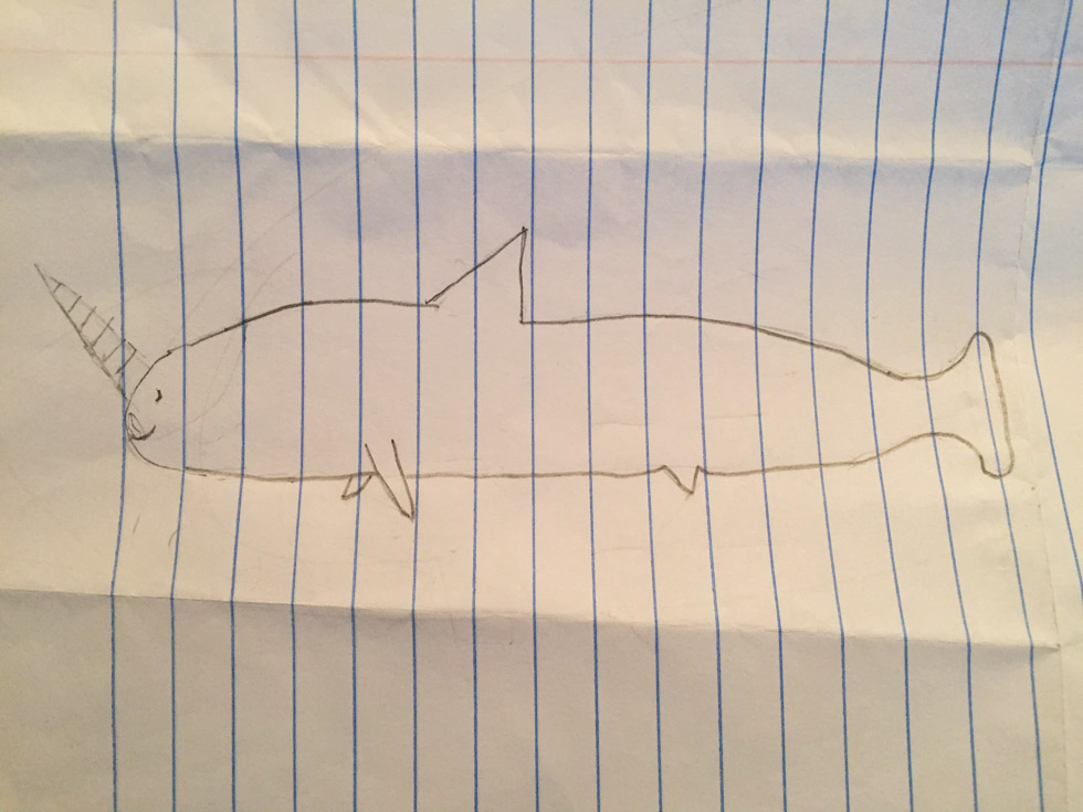 Pencil drawing of a narwhal